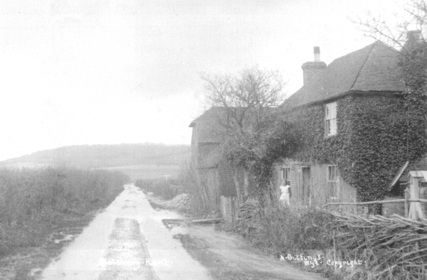 Bucket farm around 1910
